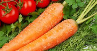 Mauritanie : des restrictions pour les tomates et carottes marocaines