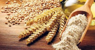 Blé-et-maïs-La-campagne-2020-2021-s-annonce-très-prospère