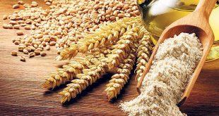 Ukraine les exportations de céréales en forte baisse
