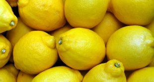 Les exportations argentines de citron baissent de 25%