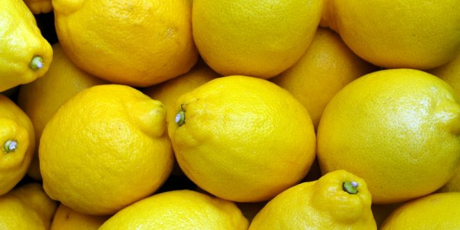 citron chinois marché international