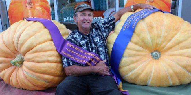 Une énorme citrouille de 196 kilos remporte des prix en Australie