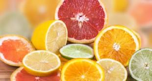 Citrus Tristeza Virus La maladie des agrumes la plus dévastatrice