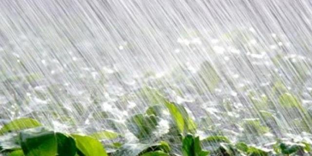 Bonne répartition de la pluviométrie en 2015