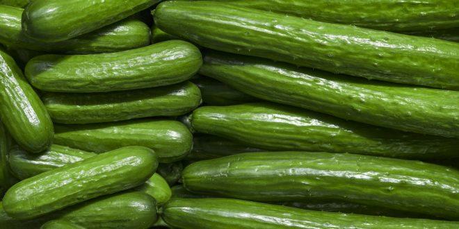 Création un emballage biodégradable à partir de pelure de concombre