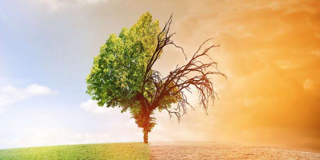 Changement climatique: Le Maroc et l'UE s'unissent pour lutter contre ce fléau