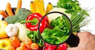Contrôle phytosanitaire : l'UE sillonne les régions du Maroc pour évaluer les produits