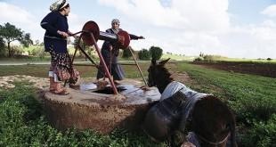 4 conventions pour la réhabilitation du monde rural