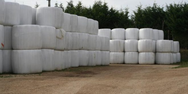 Souss-Massa-valorisation-déchets agricoles