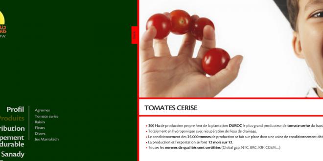 Les tomates cerises marocaines de DELASSUS tentent de charmer Dubaï
