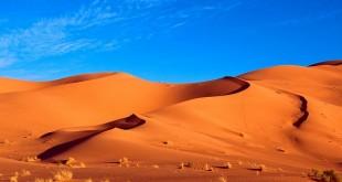 Proposition d'étiquetage des produits marocains fabriqués au Sahara?