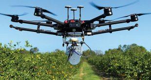 Maroc le potentiel des drones dans le traitement des arbres fruitiers