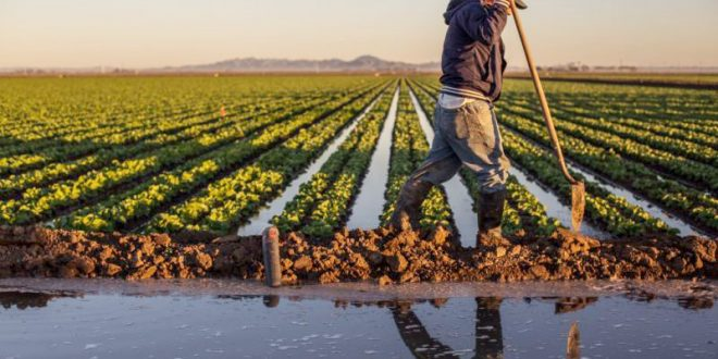 Les agriculteurs énormes bénéfices en 2021