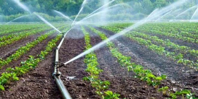 Projet-El-Guerdane-Taroudant-bénéficie-de-3,6-millions-de-m3-d-eaux-d-irrigation