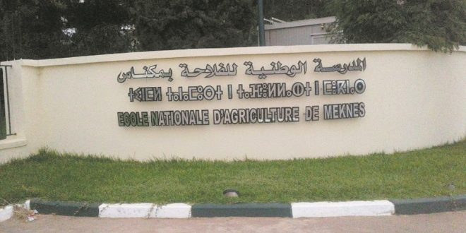 ENAM organise un forum autour de la digitalisation de l'agriculture marocaine