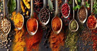 Mycotoxines : Des questions sur la sécurité alimentaire au Maroc à l'ordre de cette semaine