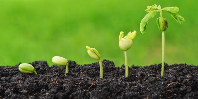 Fès: 3e édition du forum régional de l'agriculture durable