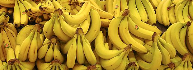 Éthylène : l'hormone de maturation des fruits