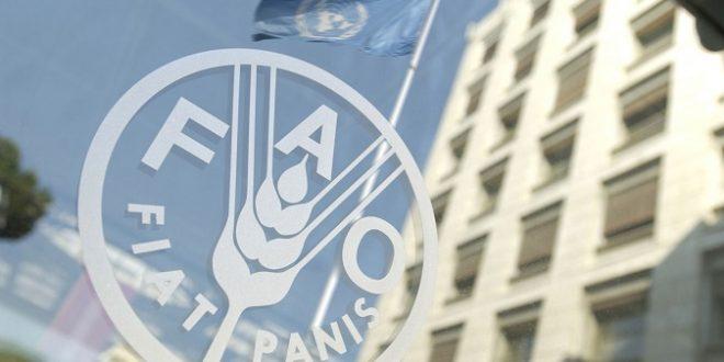 Le Maroc élu au Conseil d'Administration du Programme Alimentaire Mondial