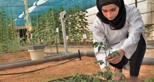 Secteur des fruits et légumes : un prix mondial pour les femmes