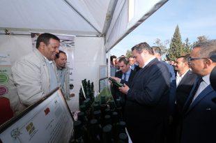 Ouverture du Festival national des petits fruits rouges à Larach