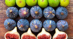 Le Maroc est le 3ème producteur de figues au monde
