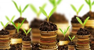 Fiscalité agricole : L'impôt final sera supérieur au taux de 20% fixé