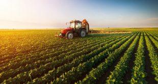 Proche-Orient Maroc agriculture