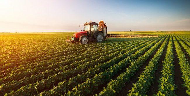 Investissements agricoles : Le Maroc est parmi les pays les plus attractifs