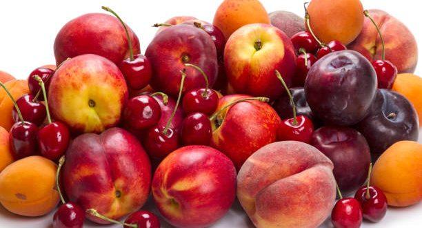 La production espagnole de fruits à noyau devrait diminuer de 35 à 40%