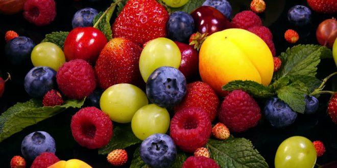 Le Kazakhstan brigue la première place des exportations de fruits et de baies