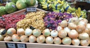 L-Égypte-exporte-de-plus-en-plus-d-oranges-d-oignons-et-de-raisins
