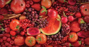 Maroc fruits et légumes vendus Espagne