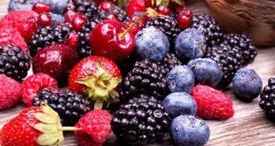 Fruits rouges du Maroc: La déception des producteurs espagnols se profile