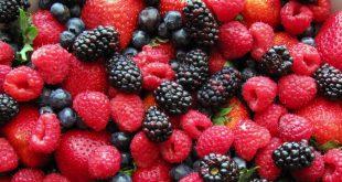 Maroc : Les exportations de fruits rouges augmentent de 24% malgré le Covid-19