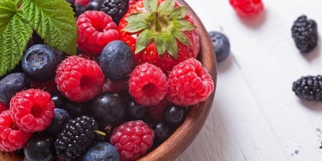 Fruits rouges: Evolution de la filière des années 90 à aujourd'hui
