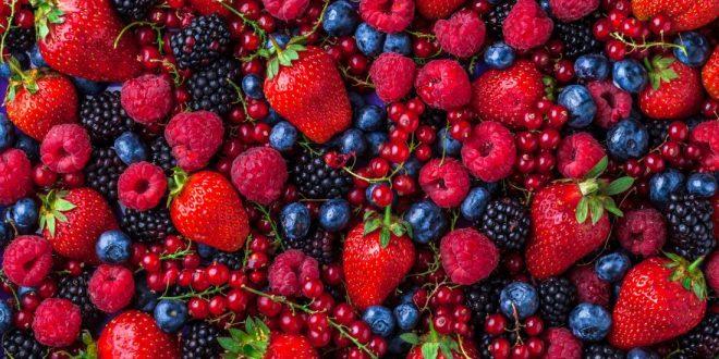 fruits rouges maroc