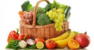 Les exportations de fruits et légumes marocains ont atteint 4% de plus dans l'UE