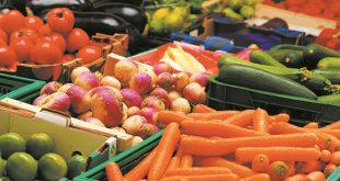 Espagne : Plus de 47% des fruits et légumes consommés proviennent du Maroc