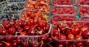 Alimentaire: Le Maroc et la Turquie dans le top 5 des importateurs clés en Russie