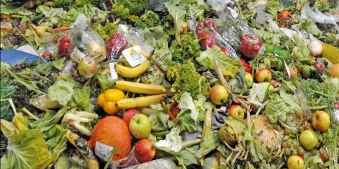intelligence artificielle pourrait réduire le gaspillage alimentaire de 50%
