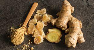 Le commerce mondial du gingembre continue de croître