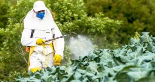 France-L-interdiction-du-glyphosate-n-est-pas-aussi-simple