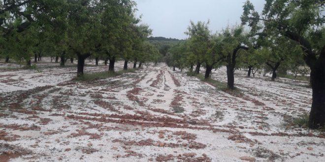 Espagne : La grêle endommage 15.000 hectares de cultures