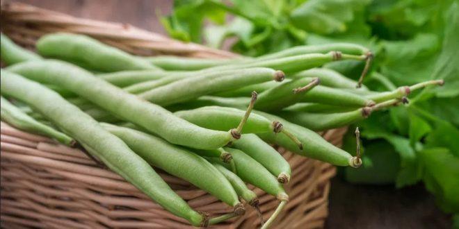 L'Allemagne détecte des résidus de pesticides sur des haricots du Maroc