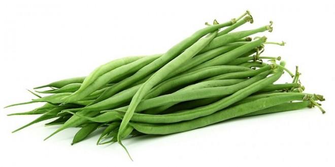 Les haricots marocains très prisés en Europe en raison de leur qualité