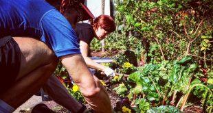 horticulture aide les enfants ayant des problèmes de comportement