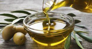 Fès-Meknès Baisse exportations huile olive