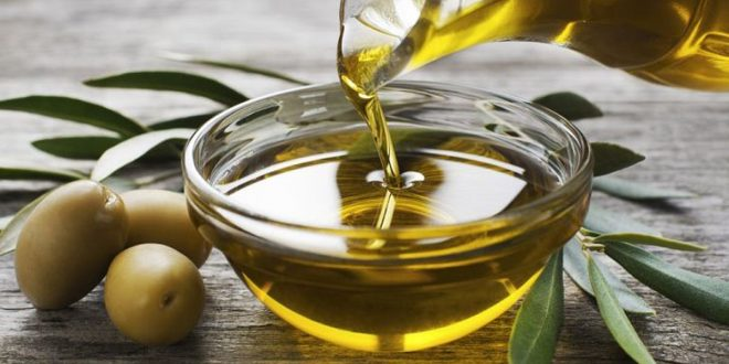 Taounate : baisse de 40% de la production olives