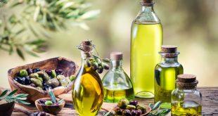 Olive: Les meilleures huiles d'olive primées lors du Volubilis Extra Vierge Maroc 2019